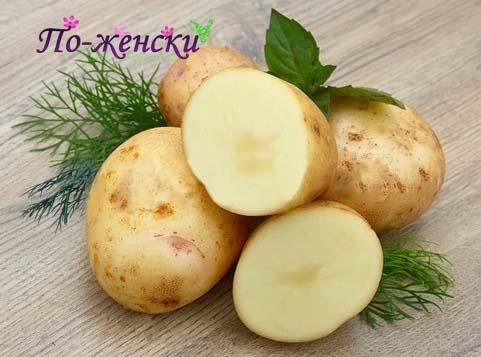 Молодой картофель польза