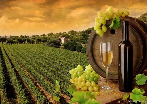 Народное лечение виноградом