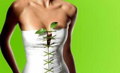 Зеленая диета – диета молодости и стройности